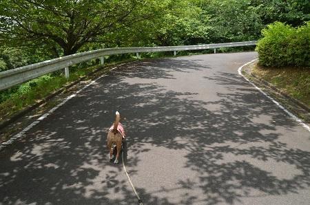 20170226富谷山ふれあい公園24