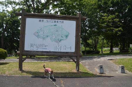 20170626 名勝 桜川03