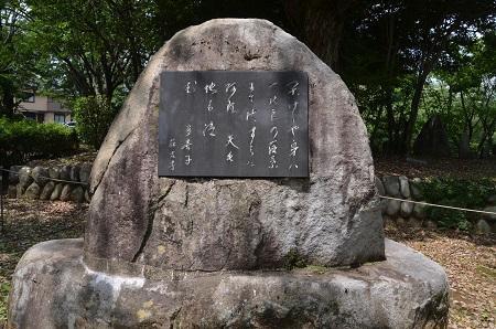 20170626 名勝 桜川07