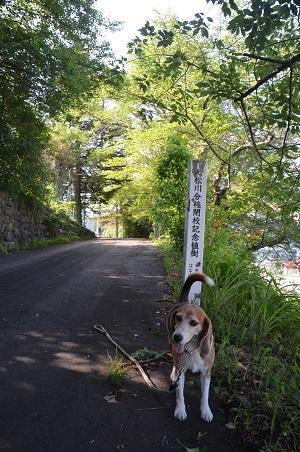 20170720旭田小学校大松川分校02