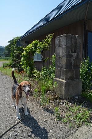 20170720楢原小学校豊成分校01