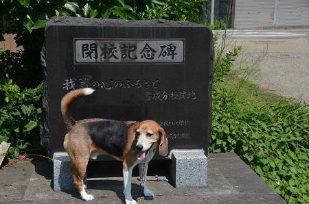 20170720楢原小学校豊成分校08