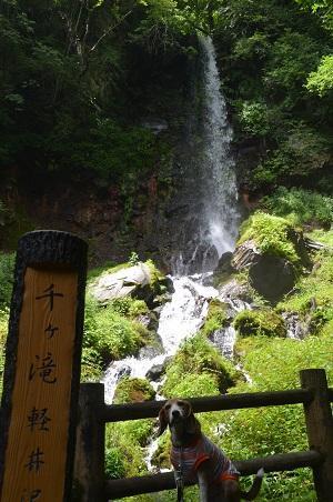 20180822千ヶ滝13