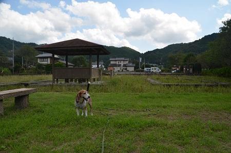 20170914三浦杉公06