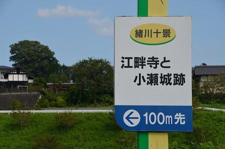 20170914江畔寺と小瀬城跡01