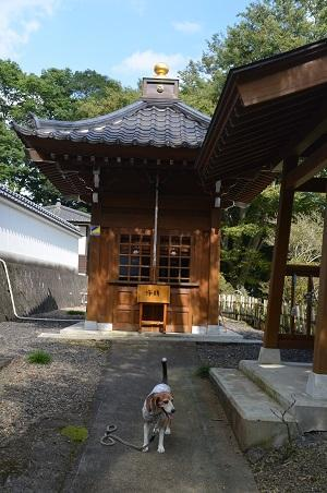 20170914江畔寺と小瀬城跡12