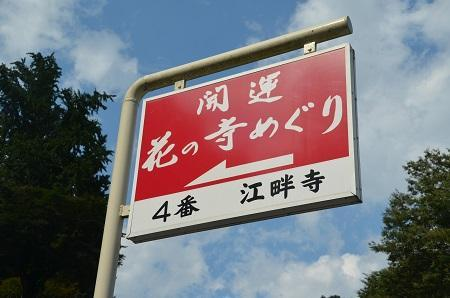 20170914江畔寺と小瀬城跡07