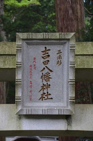 0170914鷲尾山と三浦杉05