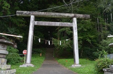 0170914鷲尾山と三浦杉02
