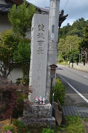 0170914鷲尾山と三浦杉18