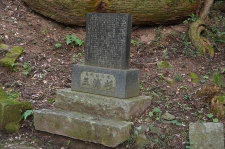 0170914鷲尾山と三浦杉14