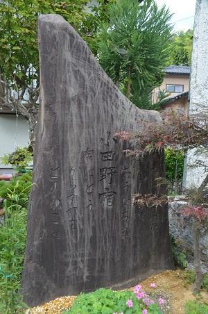 0170914鷲尾山と三浦杉20