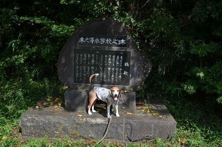 20170914氷之沢小学校10