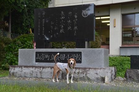 20170914長田小学校11