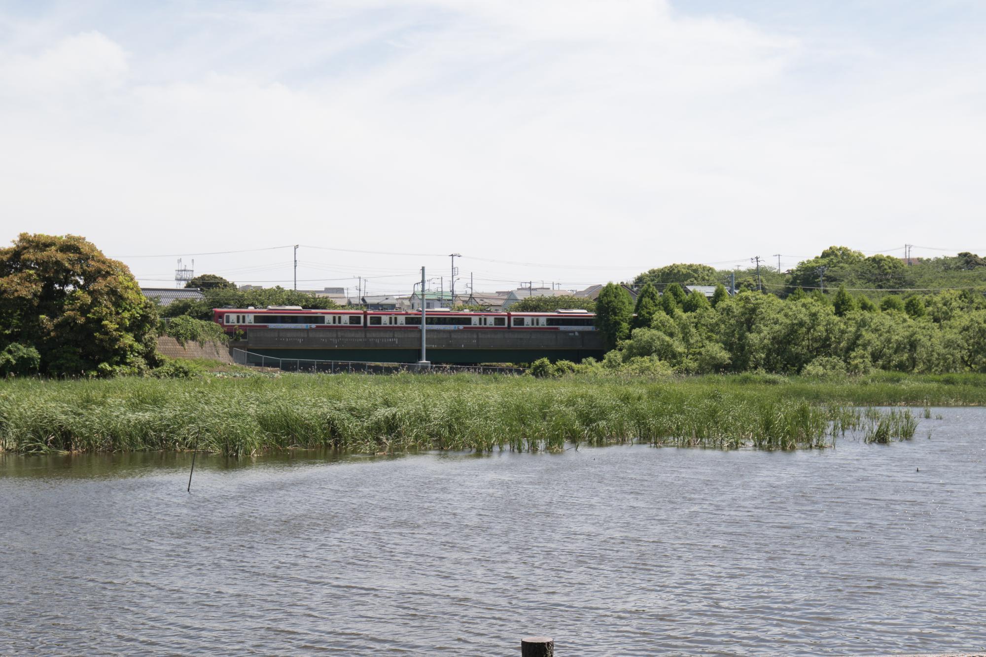 20170527-小松が池