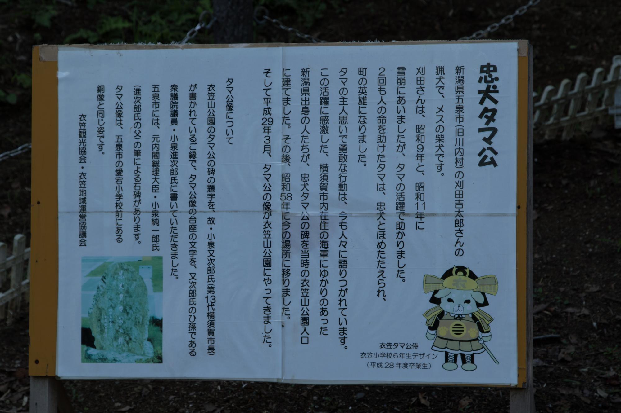 20170805-タマ説明