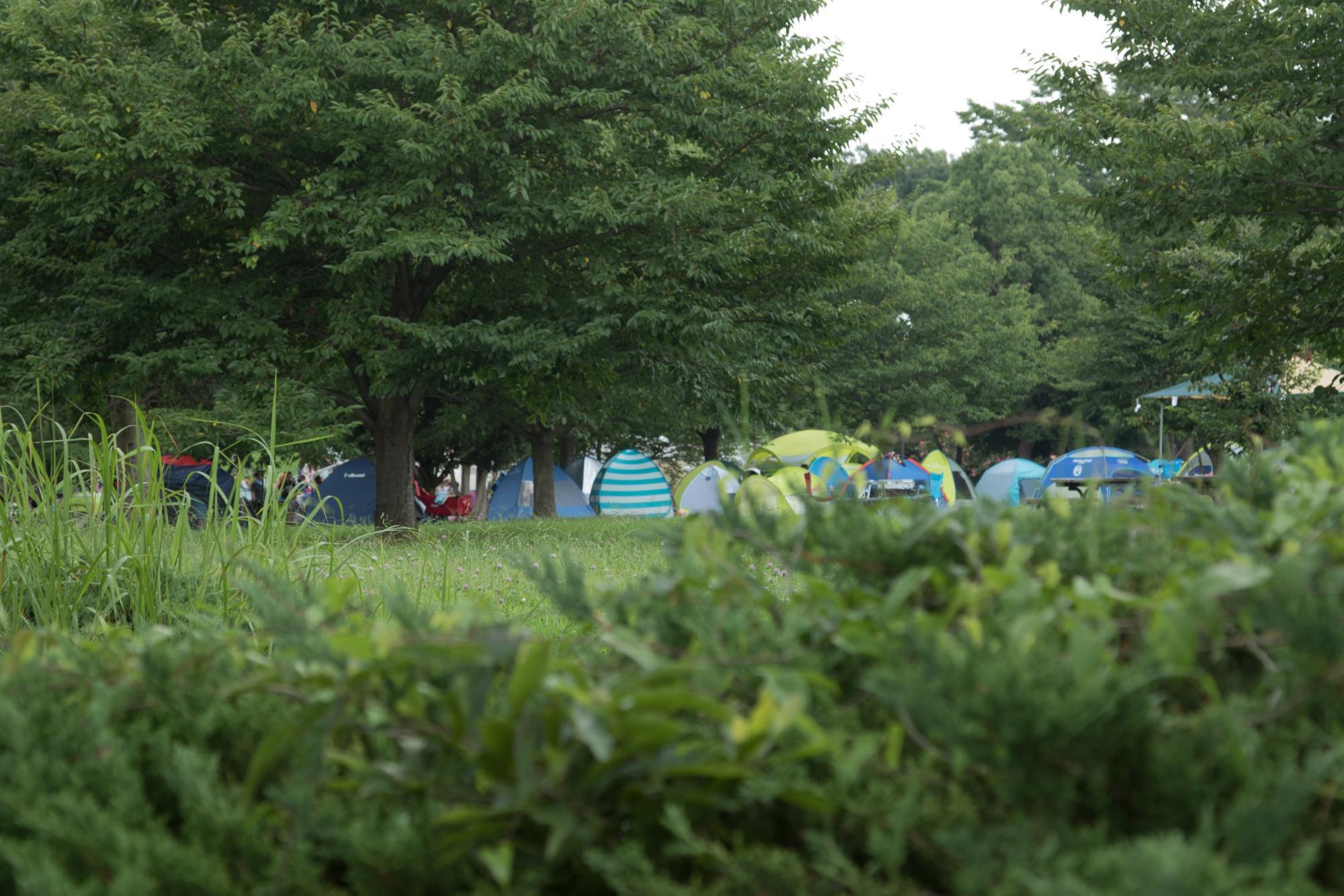20170806-キャンプ広場