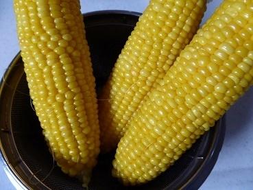 corn170725.jpg