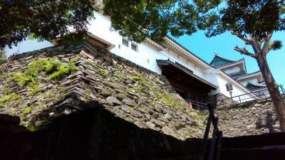 和歌山城の石組み