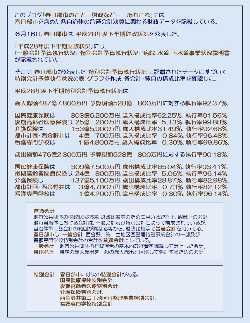春日部市平成28年度下半期特別会計予算執行状況・コメント