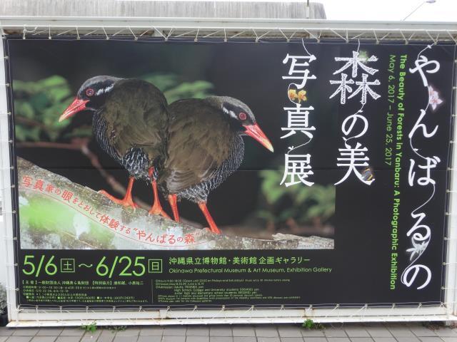 沖縄美術2
