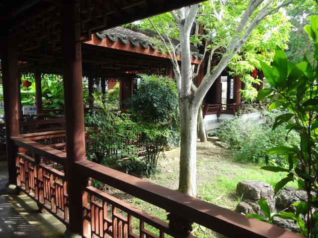 中国庭園4
