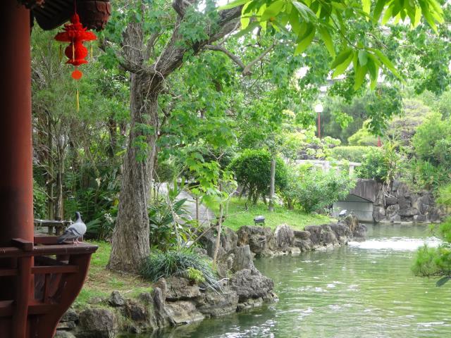 中国庭園6