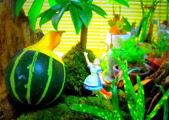 アリスと飾りかぼちゃ - コピー