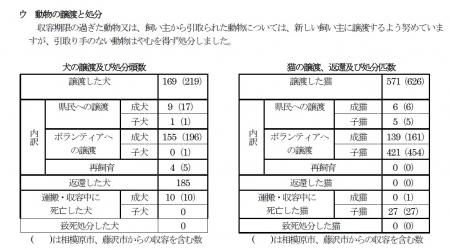 平成29年6月発表 犬猫引取り2