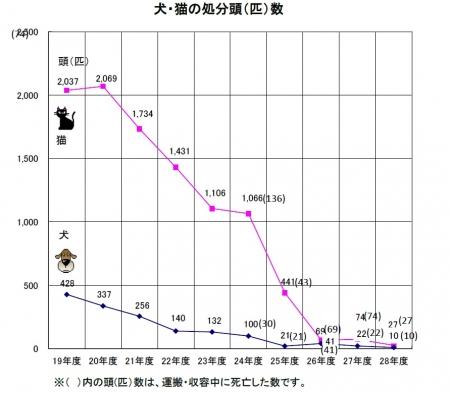 平成29年6月発表 殺処分数