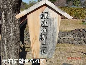 CIMG3659.jpg