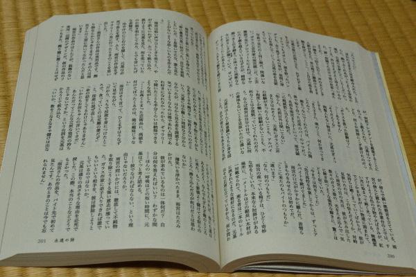 DSC_5220.jpg