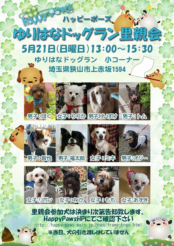 s-20170521-dog.jpg