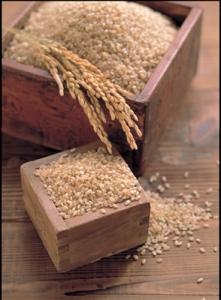 E78E84E7B1B3 玄米イメージ