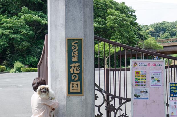 ②a花の国入口