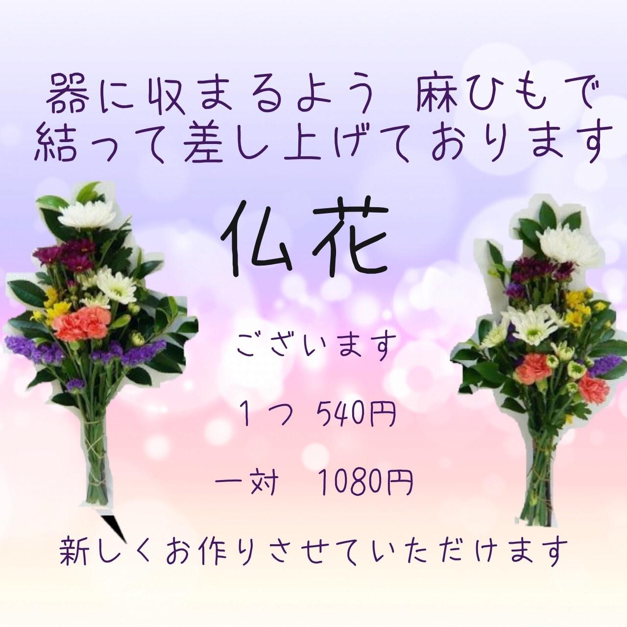 プチコノカビエラ塚口_お盆_170807_0002