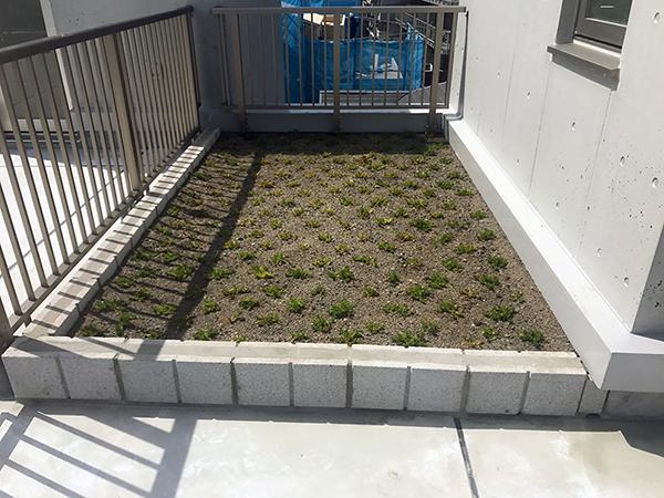 成城学園前屋上緑化スペース