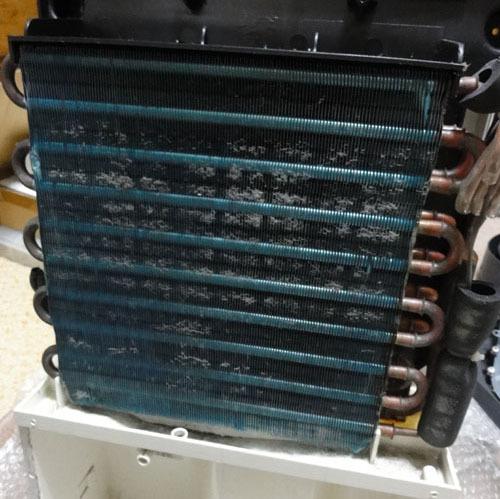 EJC-65-0004.jpg