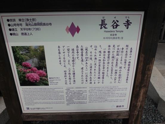 長谷寺 2