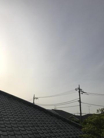2017-05-09.jpg
