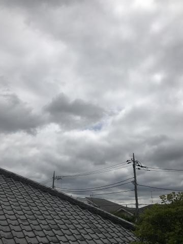 2017-05-14.jpg