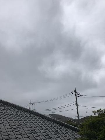 2017-05-15.jpg