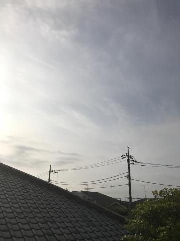 2017-05-16.jpg