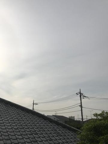2017-05-31.jpg