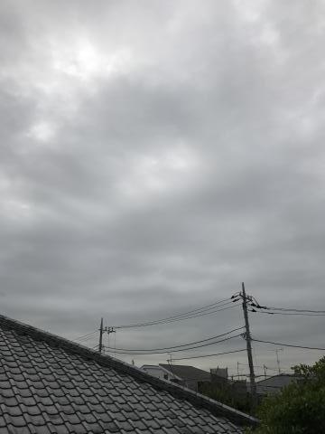 2017-06-06.jpg