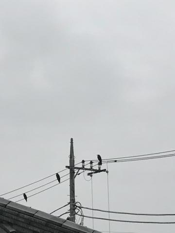 2017-06-25-1.jpg