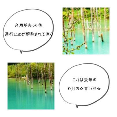 page青い池