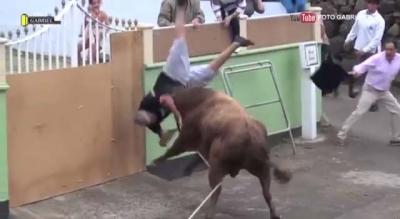 【衝撃!】iPadで撮影中に闘牛に襲われる!