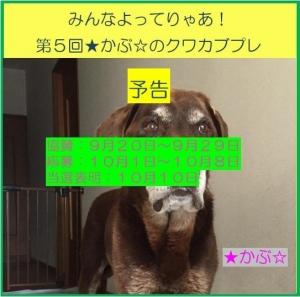 2017★かぶ☆さんプレ企画予告バナー