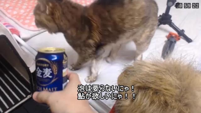 あゆ!アユ!!鮎!!! - 05